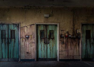 Matthew Spring - The Bleeding Doors